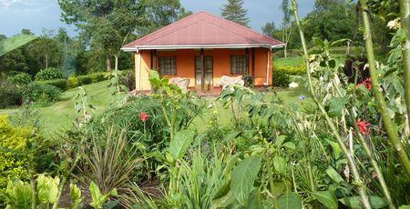Accommodaties Oeganda - Hotels Oeganda - Lodges Oeganda - lodge hotel Uganda