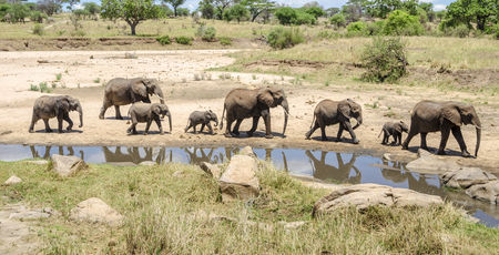 Uw Kenia reis op maat! Uw Kenia reis start hier!