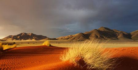 De mooiste Namibie reizen | Matoke Tours