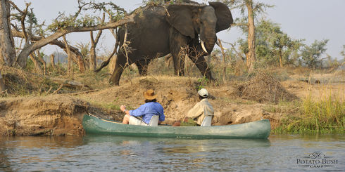 BLOG: Lower Zambezi Zambia