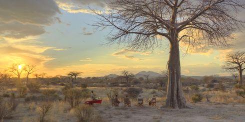 Safari reizen Afrika – Uit liefde voor Afrika | Matoke Tours