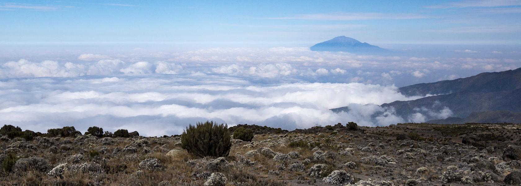Kilimanjaro Groepsreis - Machame whiskey route - met GEGARANDEERD vertrek