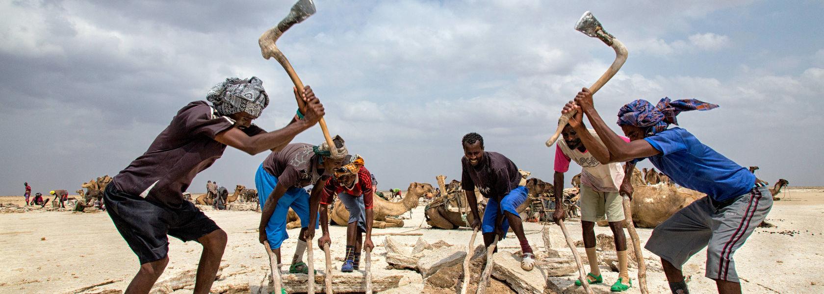 Groepsreis Ethiopie Avontuurlijk historie - 19 dagen|Matoke Tours