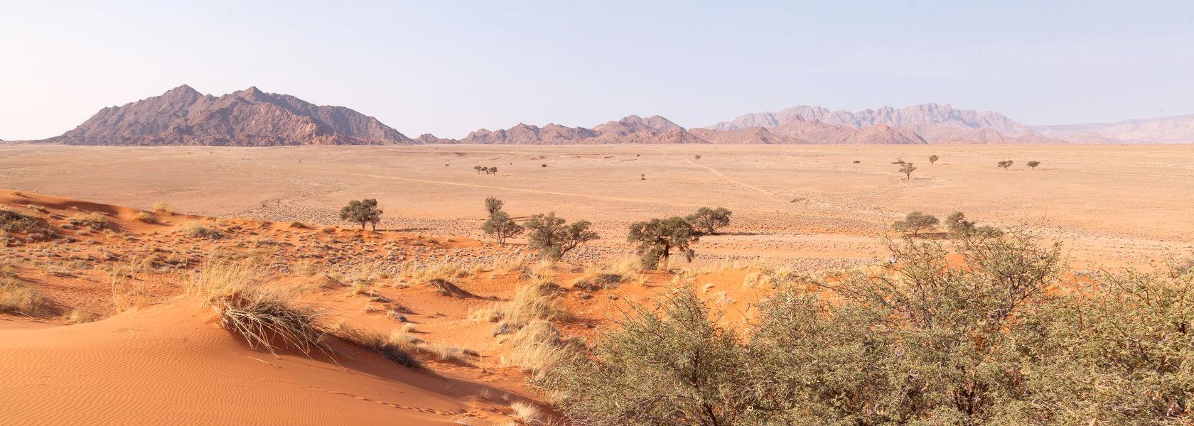Klimaat & weer Namibië - Beste reistijd Namibië | Matoke Tours