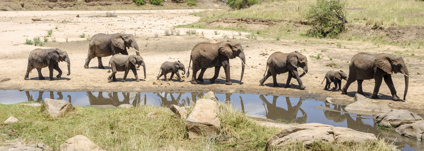 Themareizen Afrika – Uit liefde voor Afrika | Matoke Tours