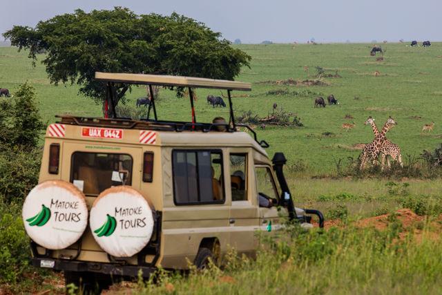 Oeganda off the beaten track » Matoke