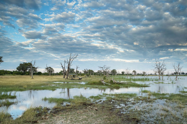 Reisinformatie Botswana   Matoke Tours
