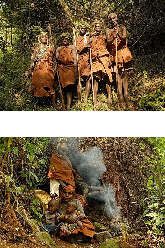 Projecten Oeganda » Matoke