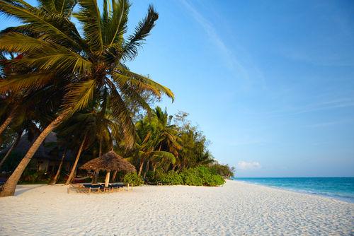 Safari en strand combineren – Bush & Beach | Matoke Tours