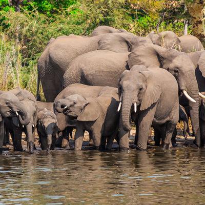 Privéreis Zambia Malawi safari, strand - 18 dagen | Matoke Tours