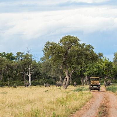 prive reis Malawi Zambia - Off the beaten track