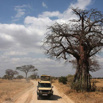 Privéreis Tanzania Zanzibar actief ongerept - 14 dagen | Matoke Tours