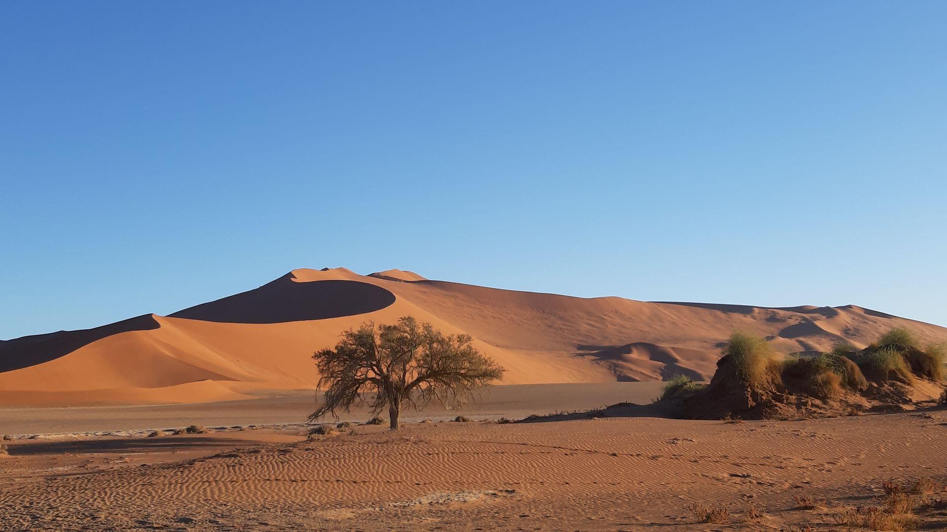 Bezienswaardigheden & Hoogtepunten Namibië - Wat te doen in Namibië
