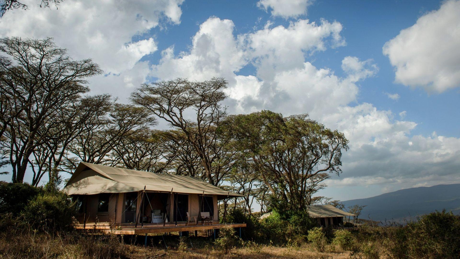 Nomad Entamanu Ngorongoro » Matoke