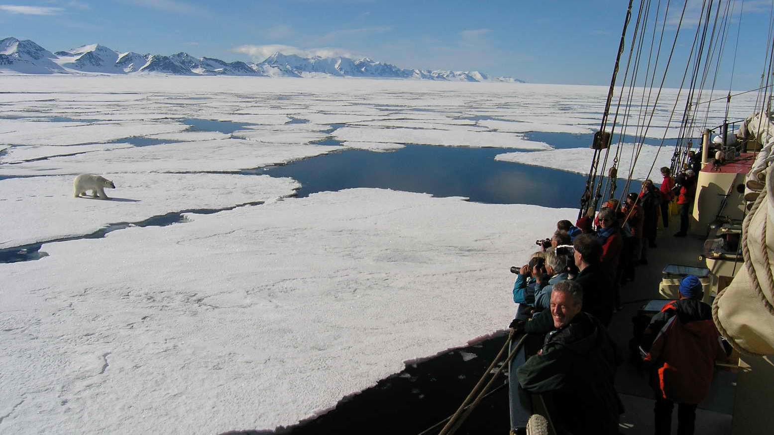 Expeditie passagiersschip Plancius » Matoke