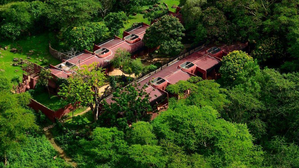 Amboseli Serena Safari Lodge » Matoke