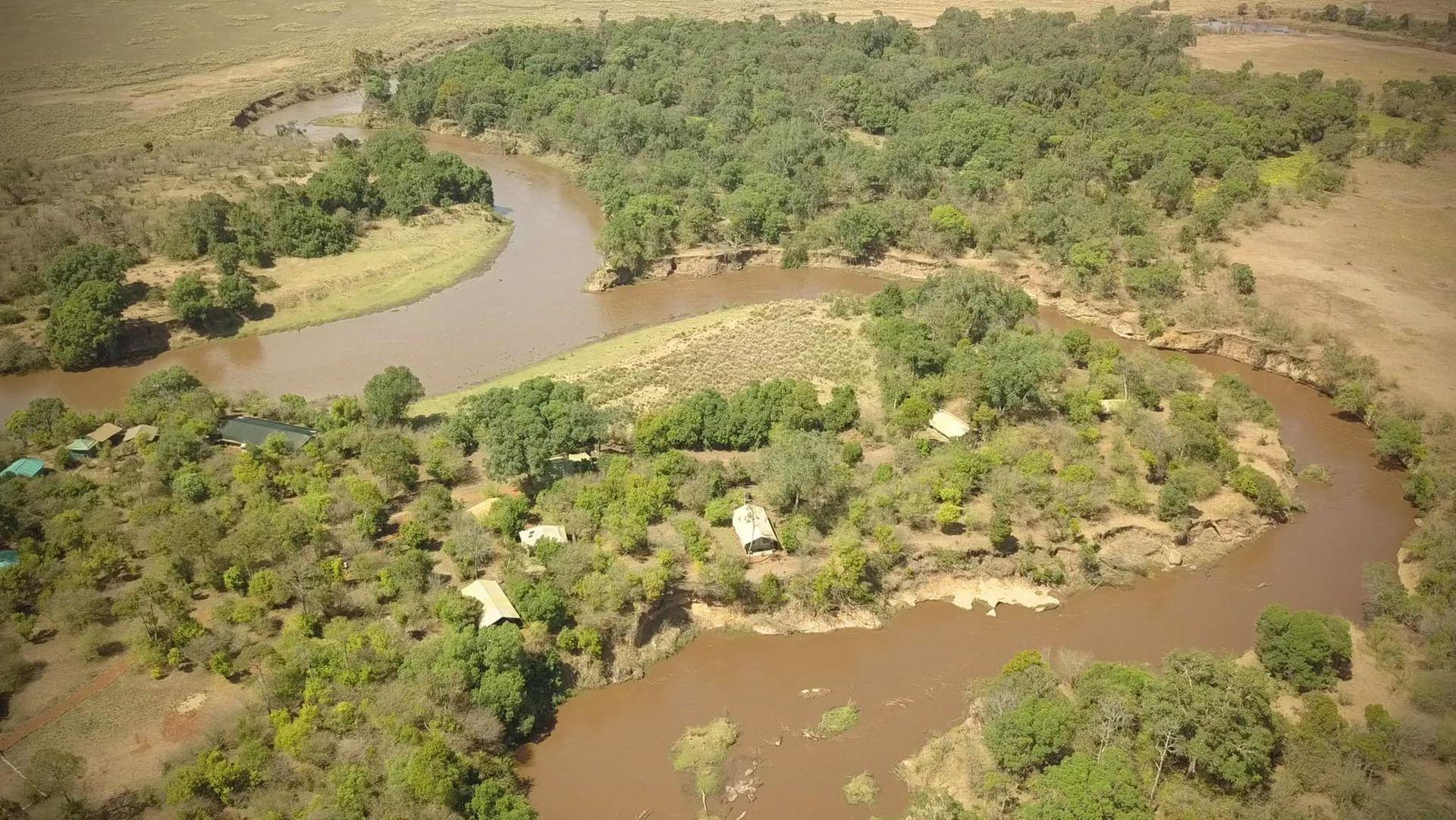 Hammerkop Migration Camp » Matoke