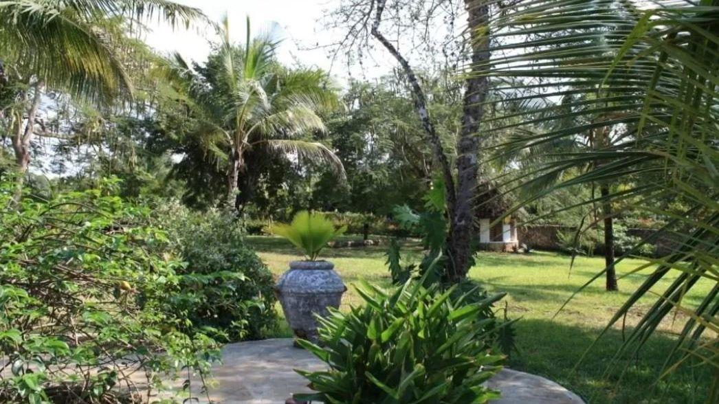 Diani Marine Village » Matoke