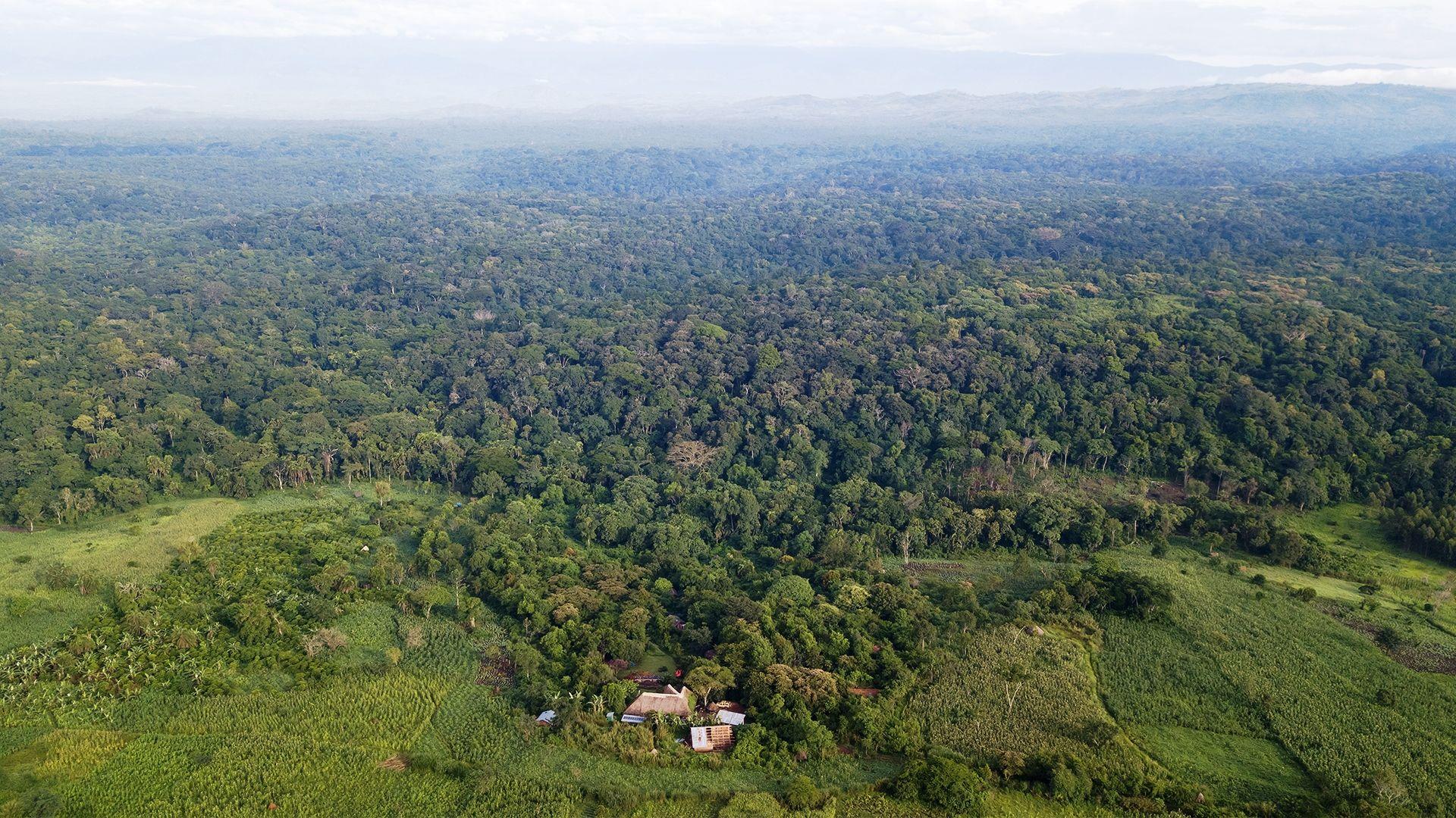 Uganda reis informatie | Matoke Tours