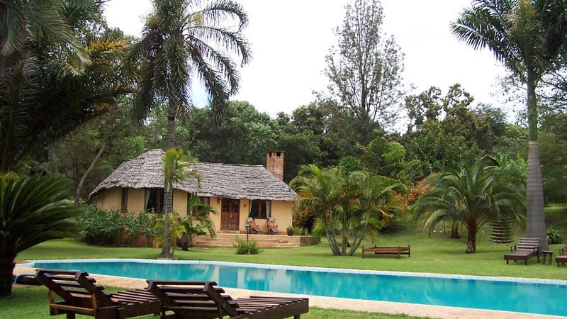 Arusha Safari Lodge » Matoke