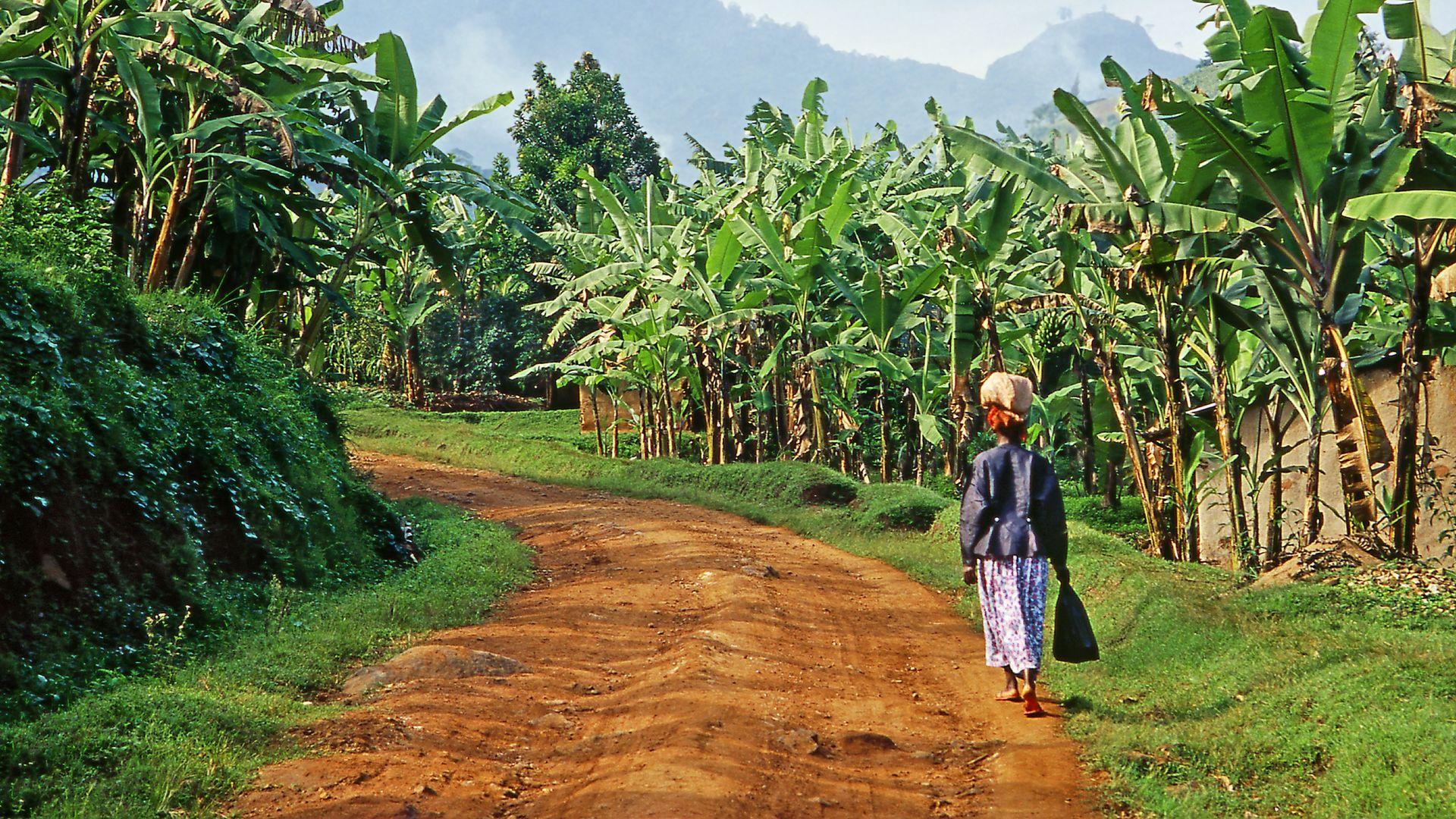 Reisverhalen en ervaringen Matoke Tours reizigers