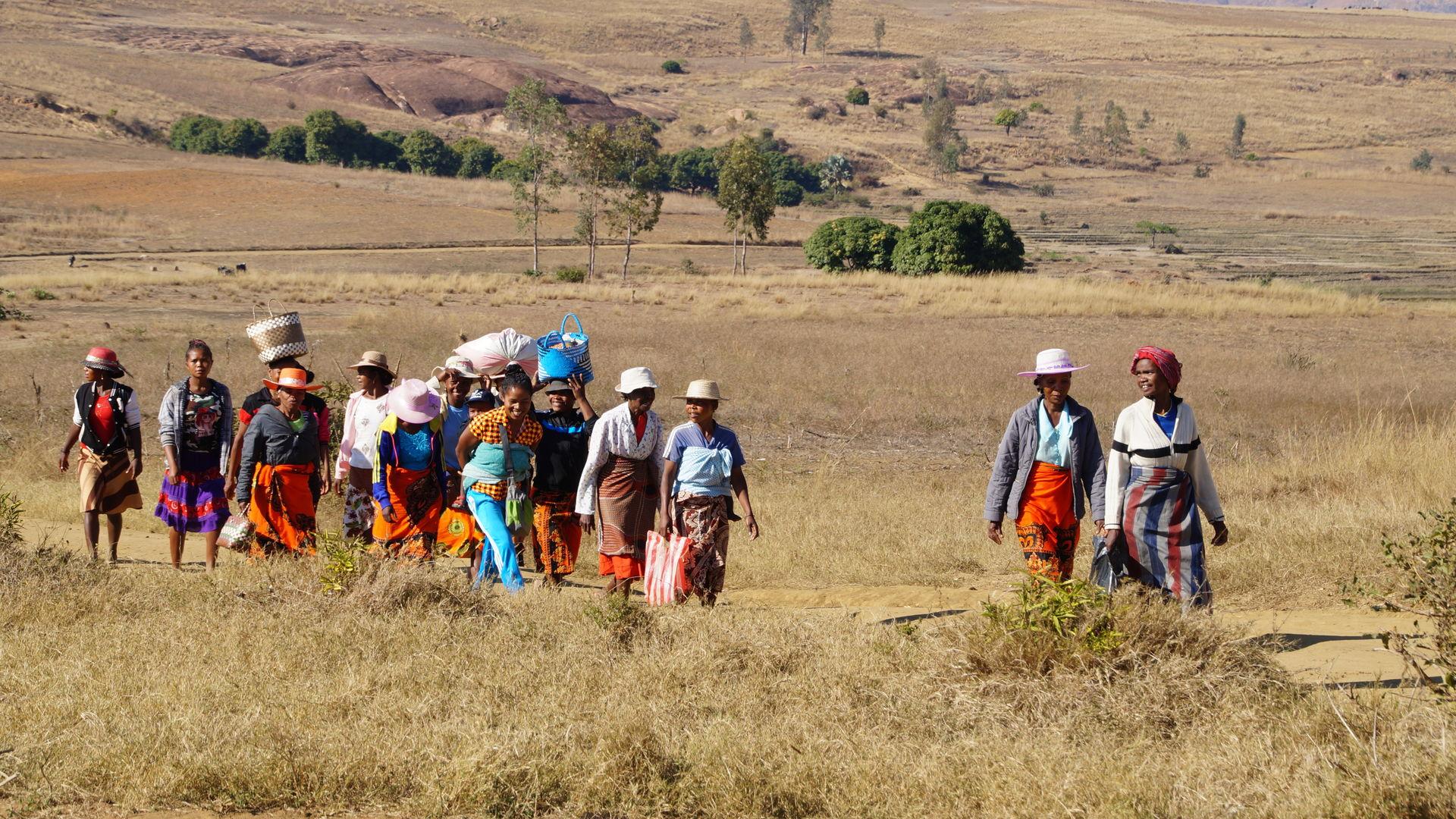 Privé familiereis Madagascar - Madagaskar individuele reis