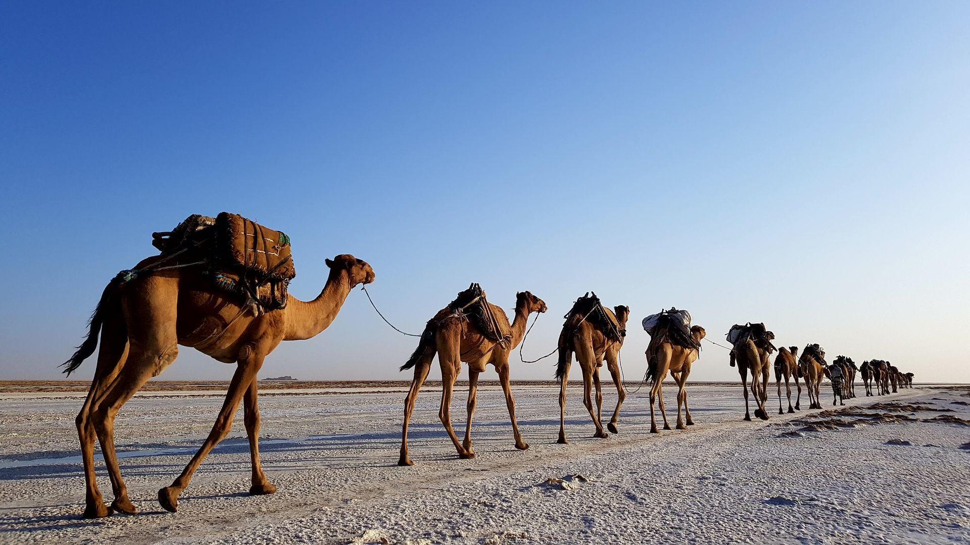Bezienswaardigheden Ethiopië - Highlights & Hoogtepunten | Matoke Tours