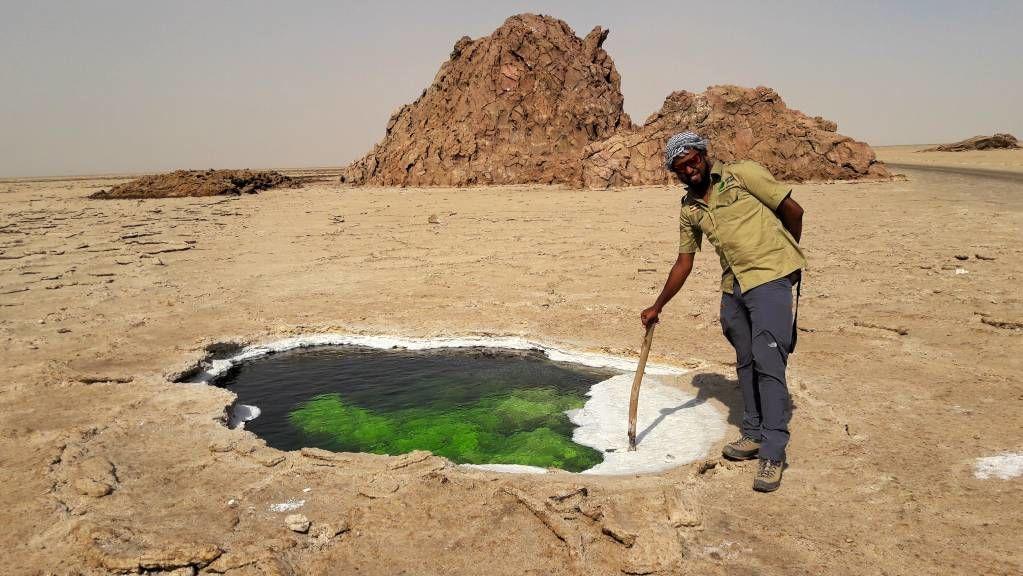 Danakil depressie bezoeken - Ethiopië | Matoke Tours