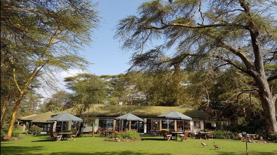 Elsamere Conservation Center & Lodge » Matoke