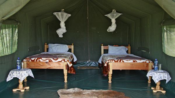 Fisi Camp » Matoke