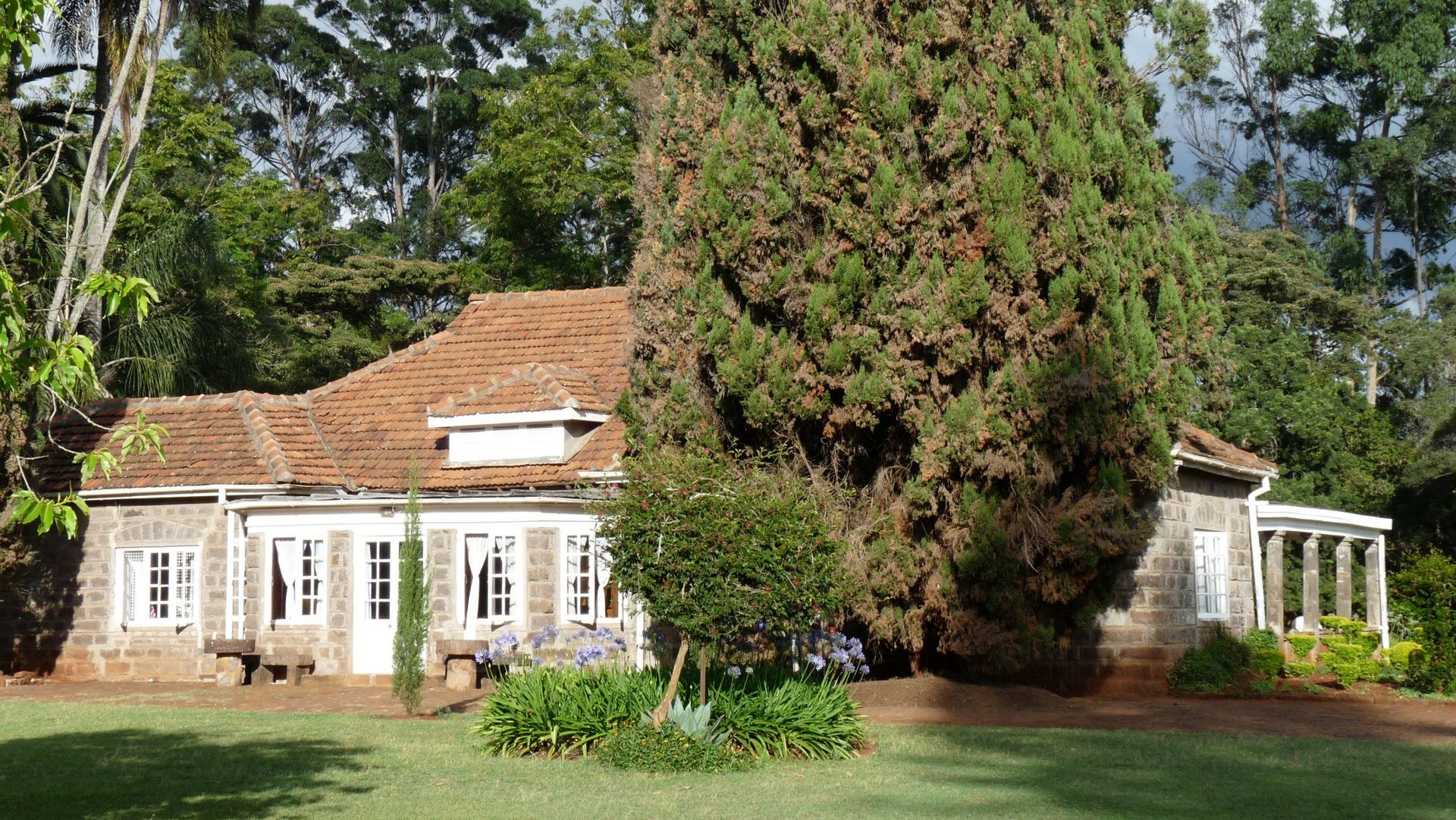 Karen Blixen Cottages » Matoke