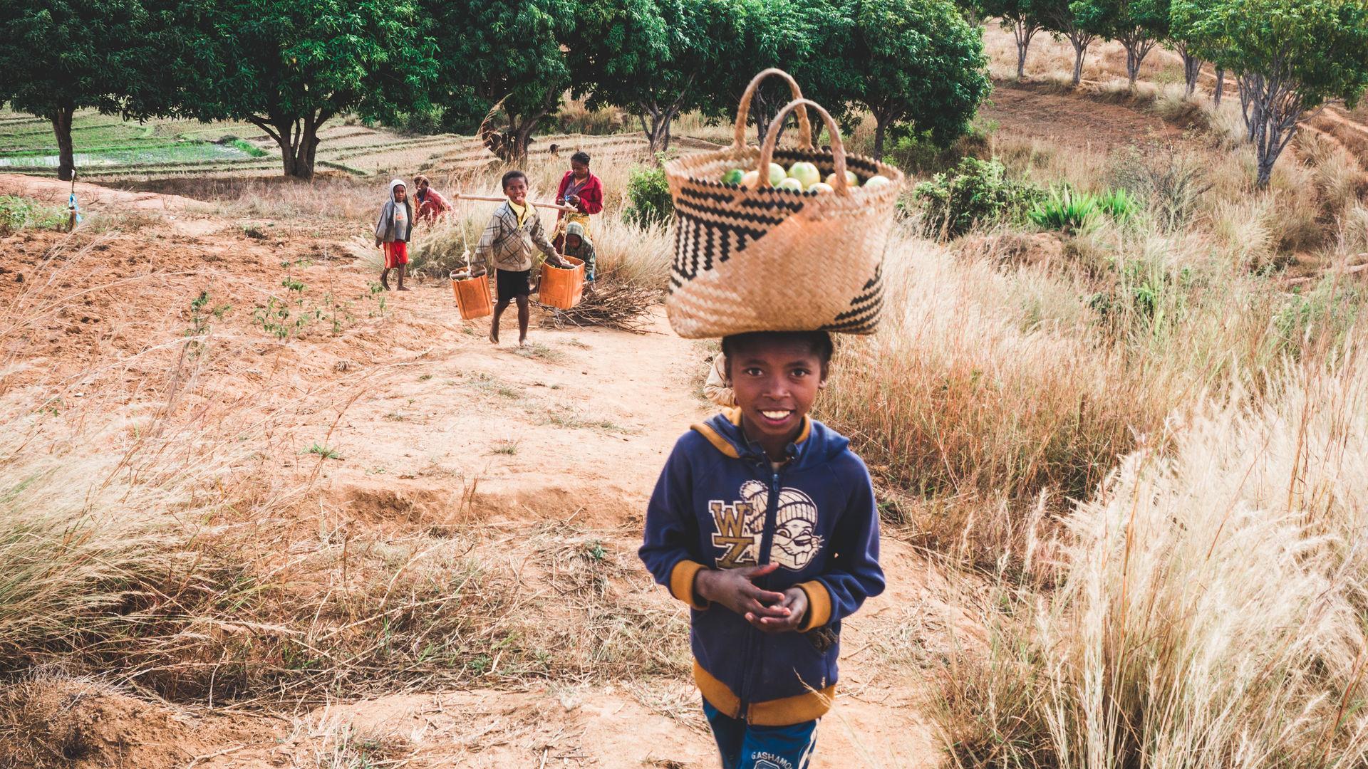 Individuele rondreis door Madagascar | Prive reizen Madagaskar