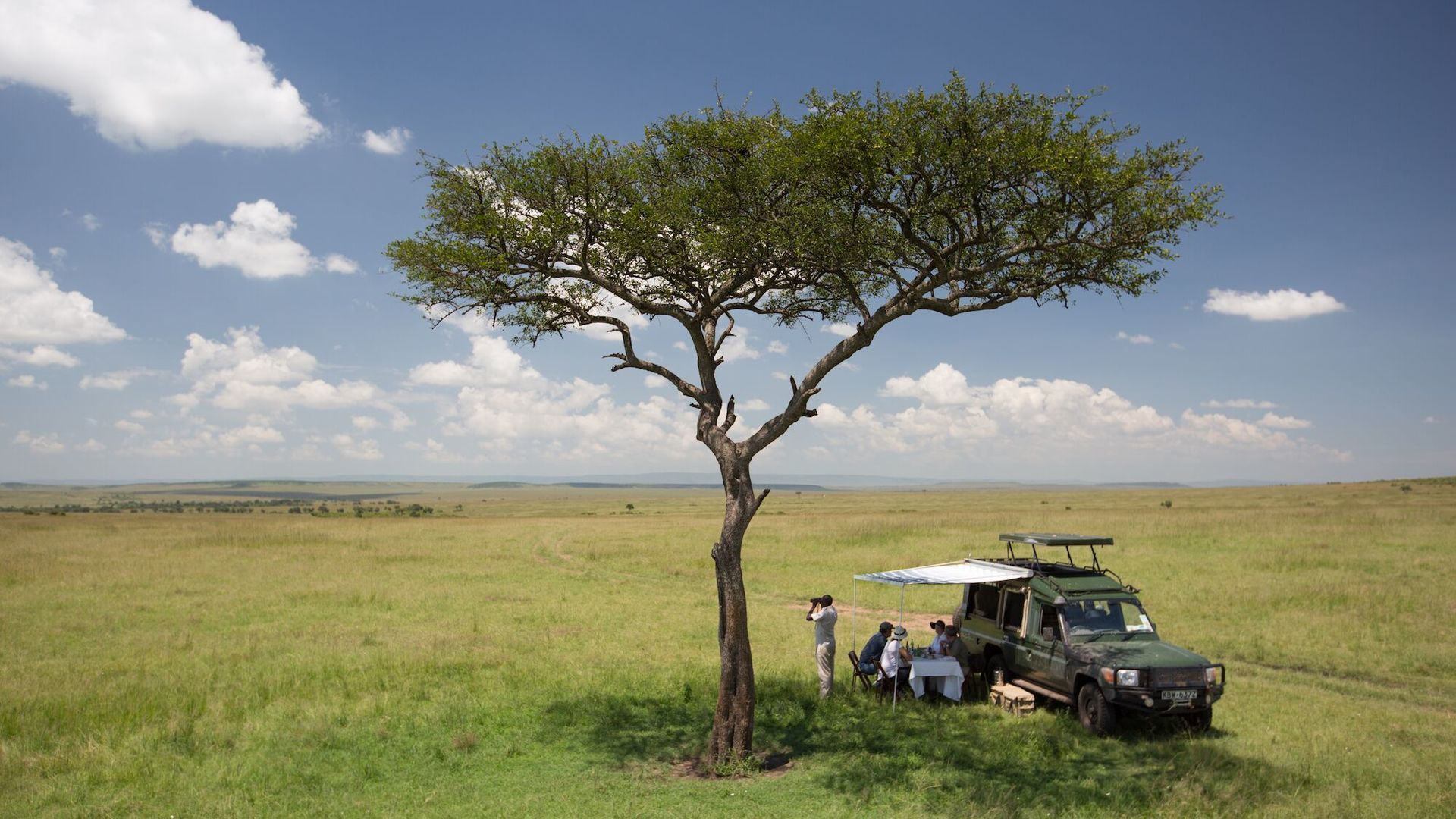 Privéreis Kenia vliegsafari en strand – 9 dagen   Matoke Tours
