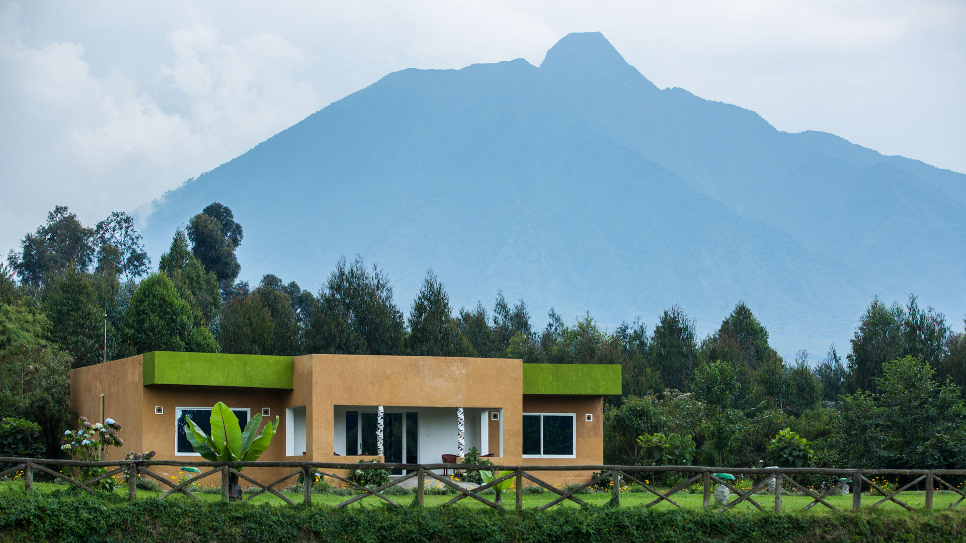 Mountain Gorilla View Lodge » Matoke
