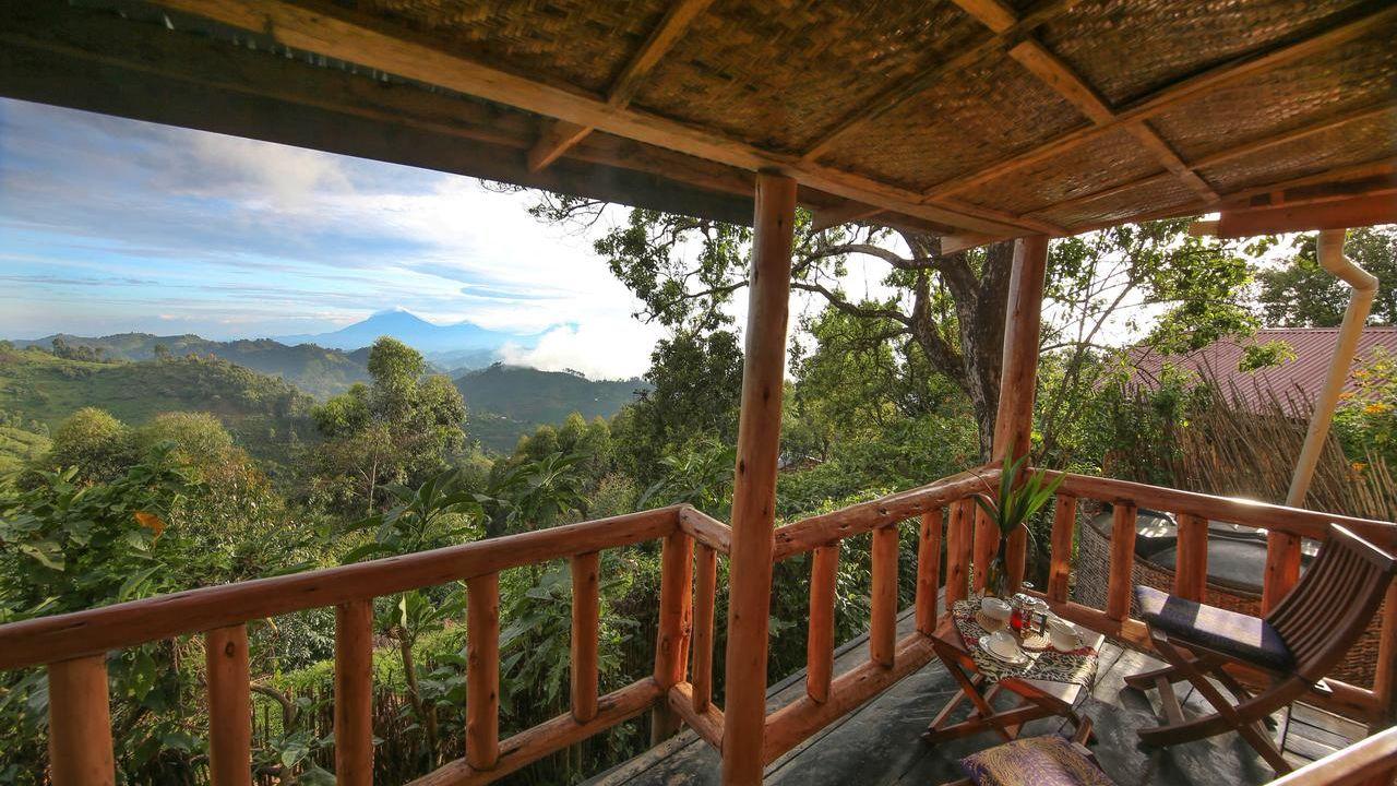 Nkuringo Bwindi Gorilla Lodge » Matoke