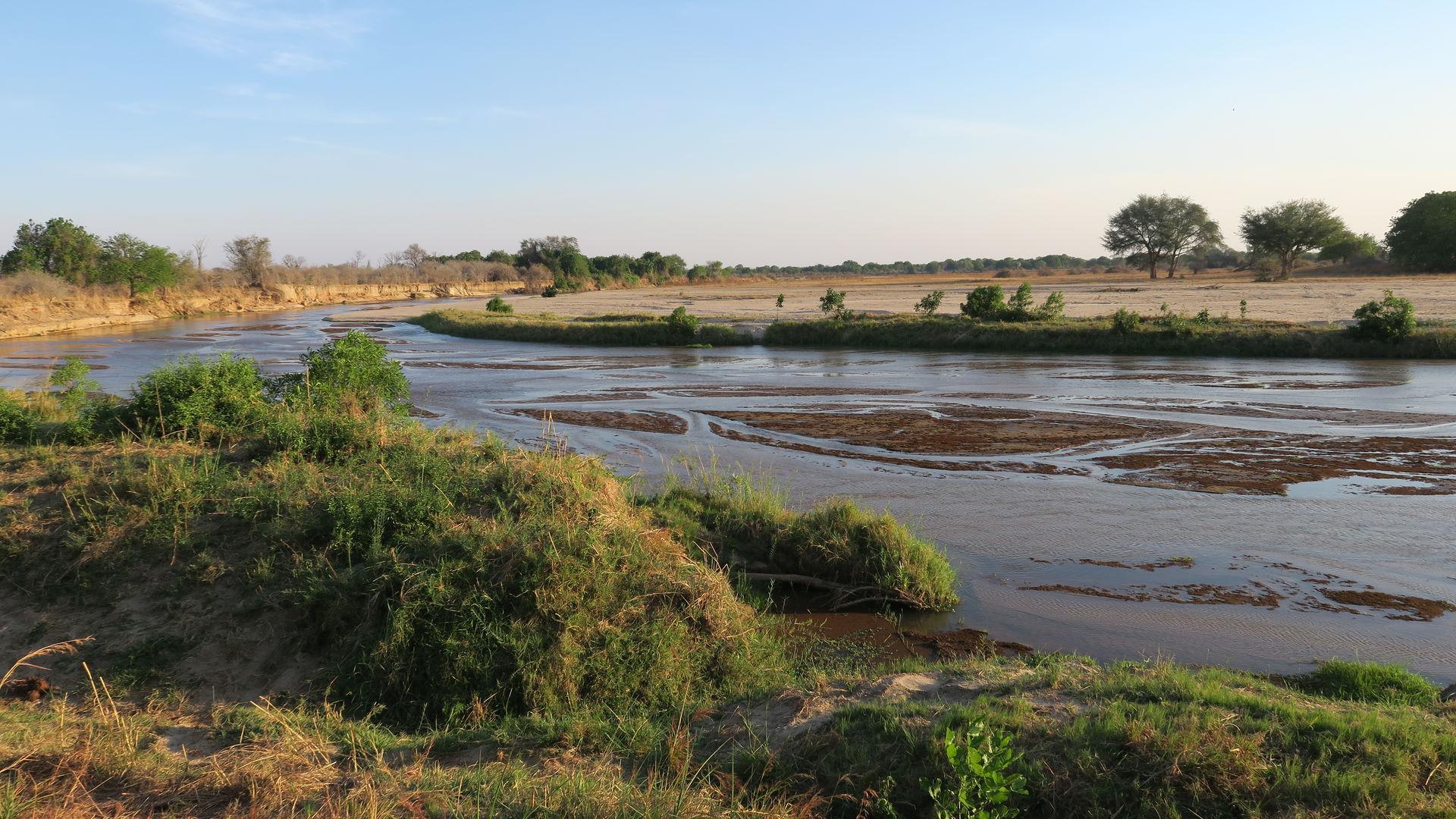 North Luangwa » Matoke