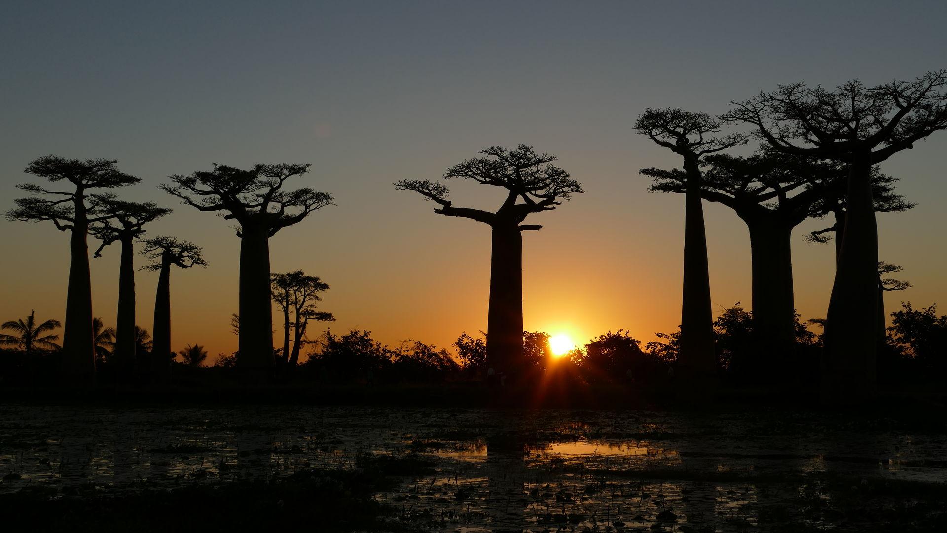 Beste reistijd Madagascar - Weer, klimaat & regenseizoen informatie
