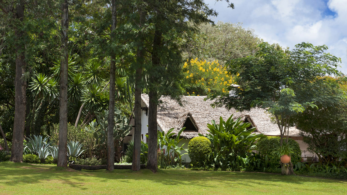Plantation Lodge » Matoke