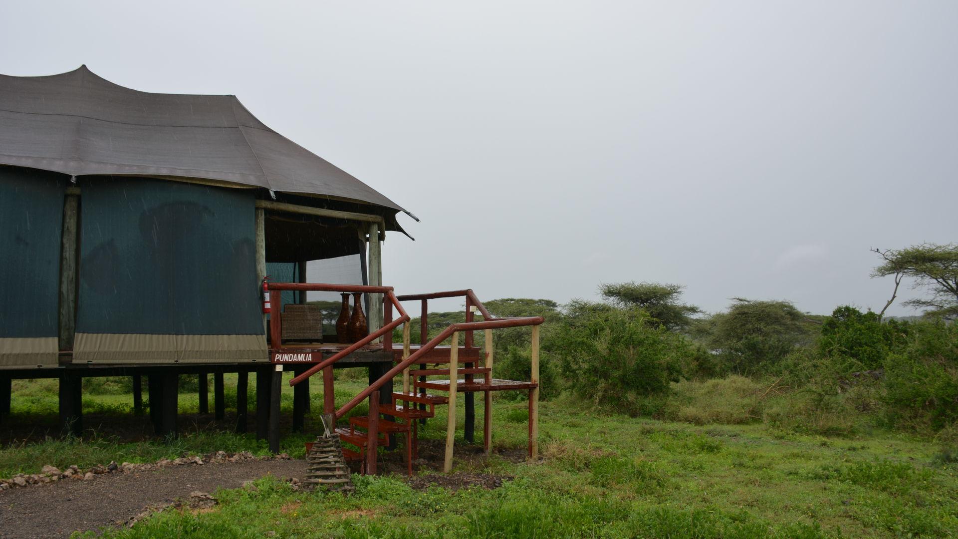 Lake Masek Tented Lodge » Matoke