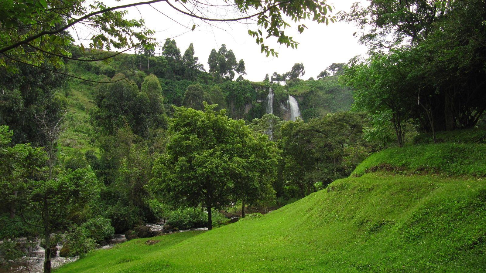 Sipi River Lodge » Matoke