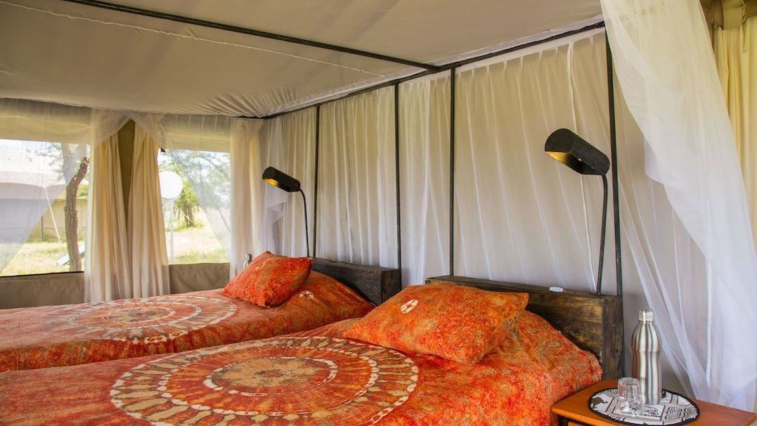 Thorn Tree Camp » Matoke