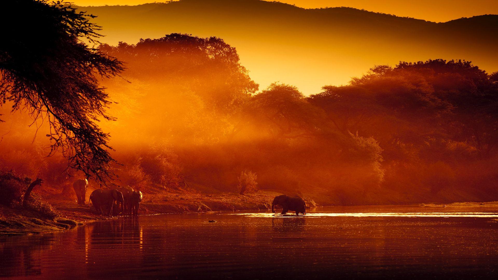 Lower Zambezi - hoogtepunten - Zambia