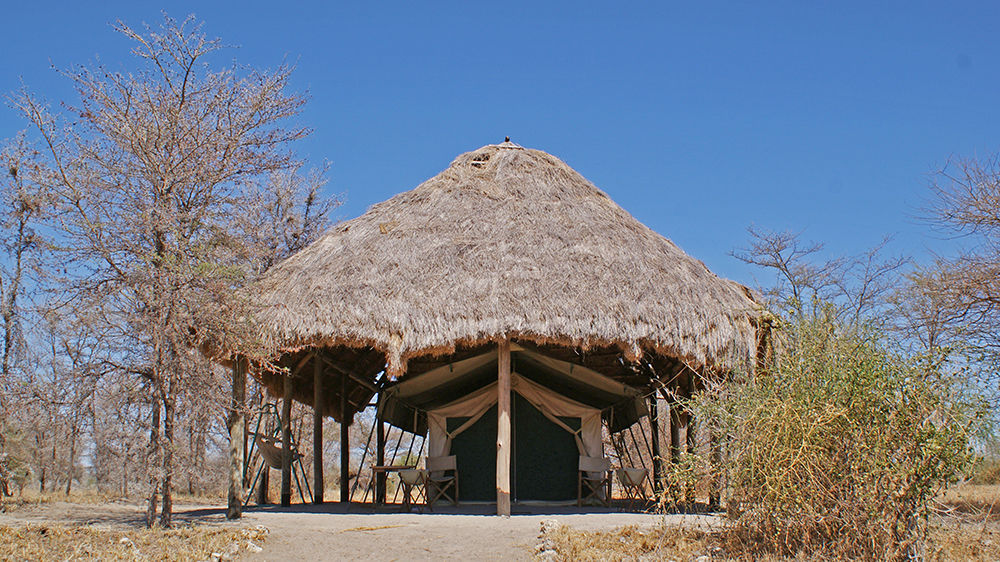 Whistling Thorn Tented Camp » Matoke