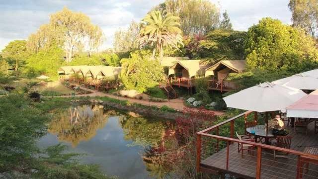 Wildebeest Eco Camp » Matoke