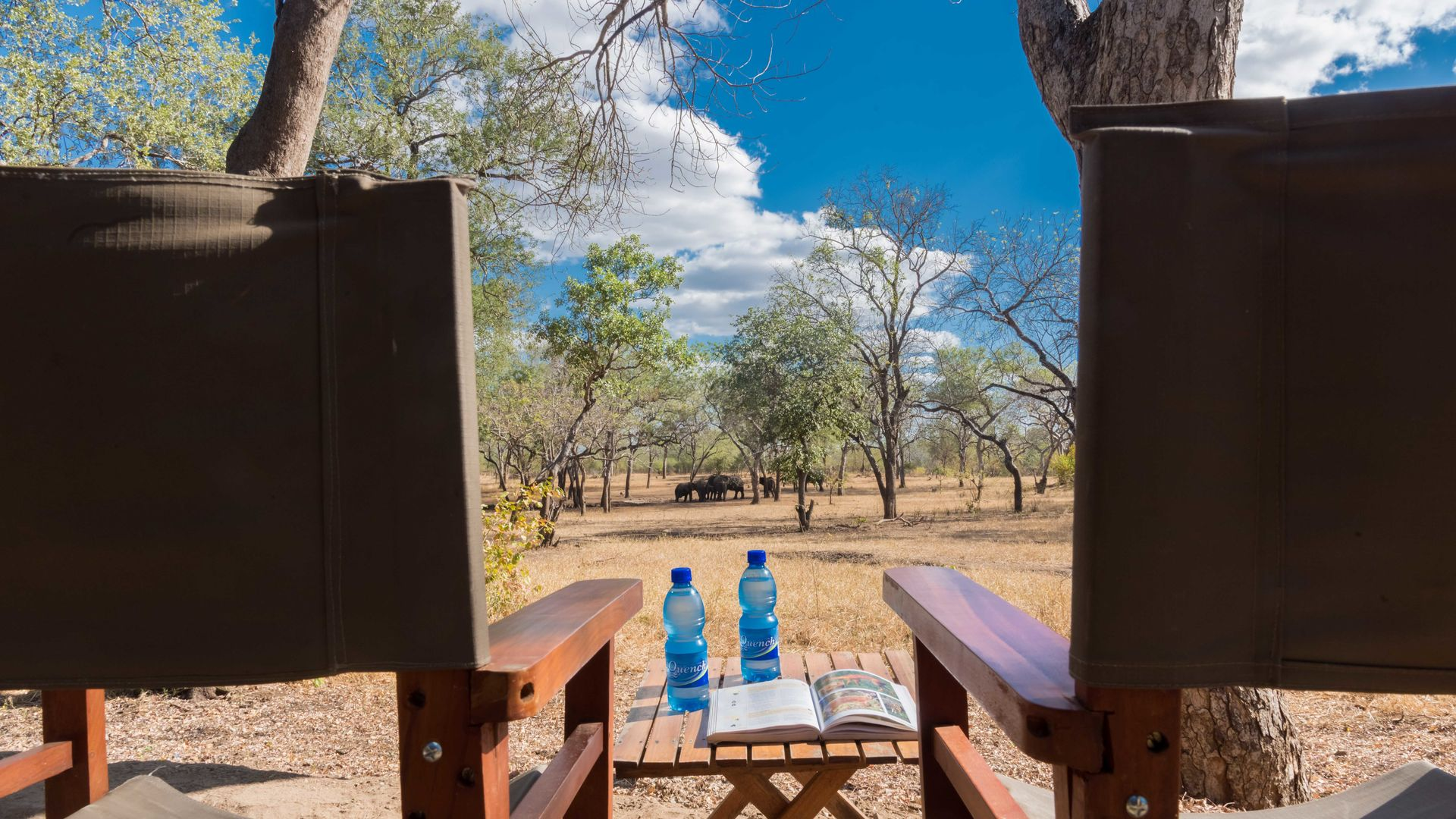 Thawale Tented Camp » Matoke