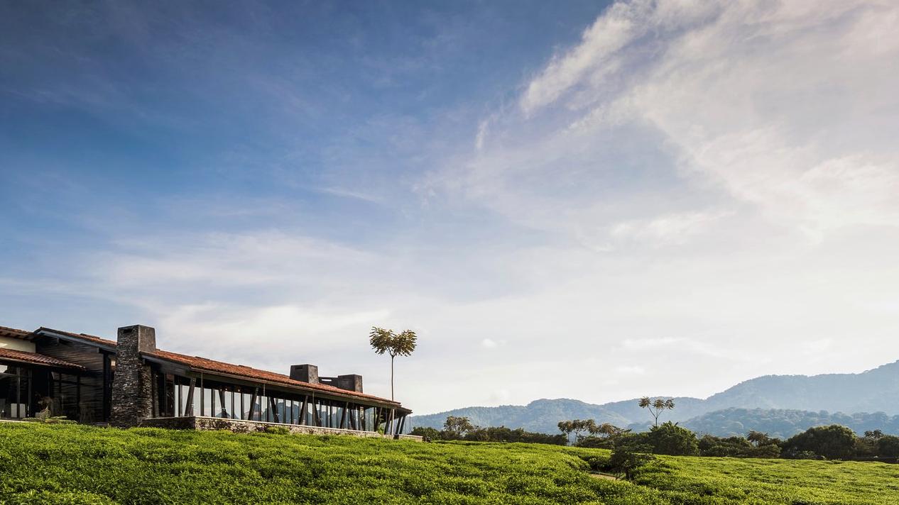 One & Only Nyungwe House » Matoke