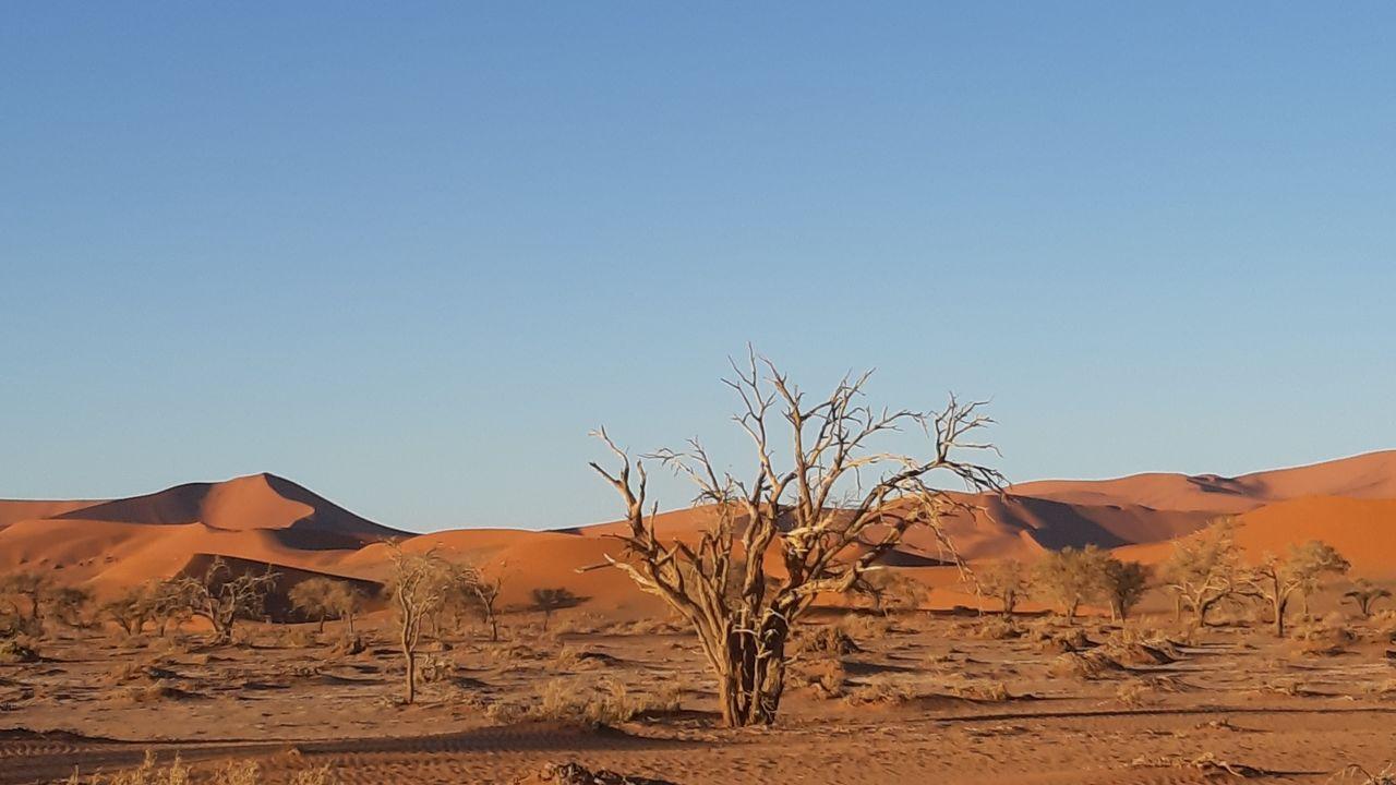 Namibiëwoestijn - de oudste woestijn ter wereld in Namibië - Matoke Tours