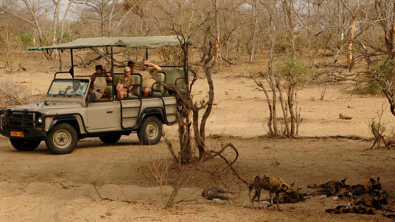 Budget safari Tanzania Zanzibar - safari Selous met Zanzibar