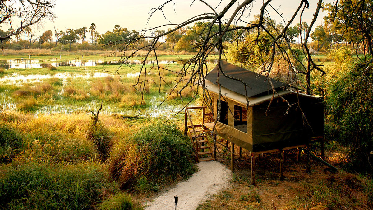 Okavango Delta - op safari in de Okavango - Matoke Tours