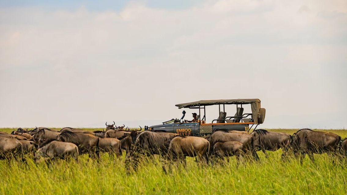 Vakantie of rondreis in Kenia - Uit liefde voor Afrika | Matoke Tours